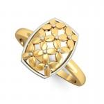 Efflorescent Ring
